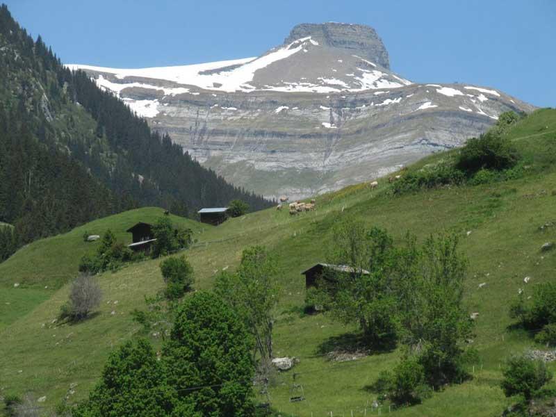 Alpen – Geologische Wandelingen